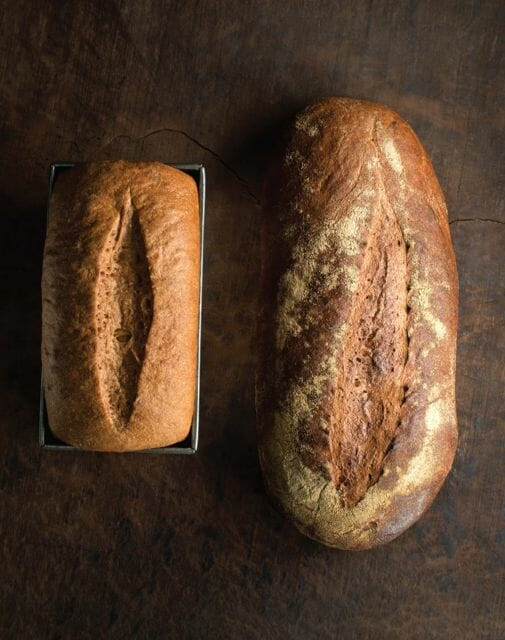 BREV Sprouted Whole Wheat Bread image p 62