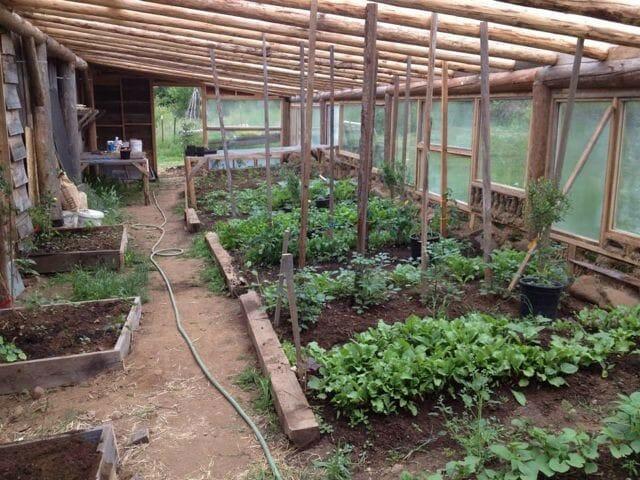 Greenhouse at Siskiyou Seeds