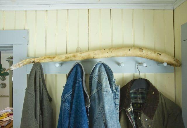 cucuzzi drying 2