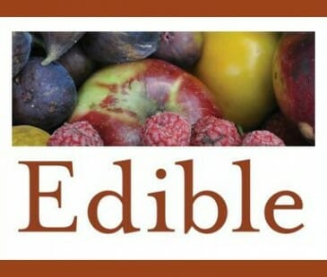 edible revise 4
