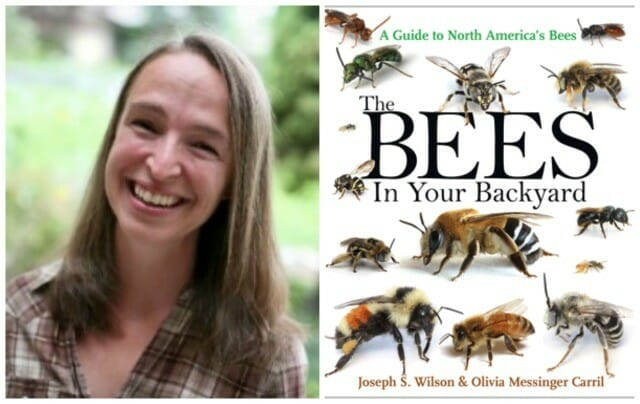 olivia carril and bee book