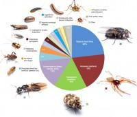'arthropods of the great indoors,' with ncsu's dr. matt bertone