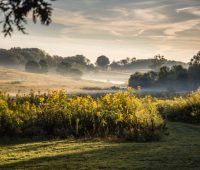 making meadows, with longwood gardens' tom brightman