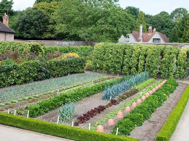 copyright-west-dean-gardens-84352-kitchen-garden-2-1