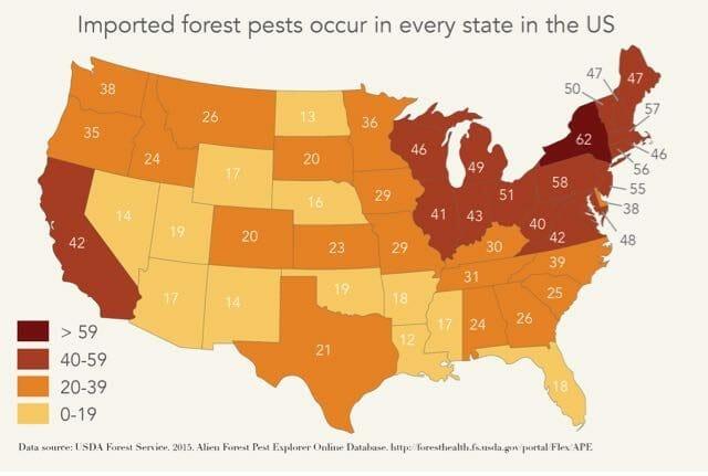 pests_map