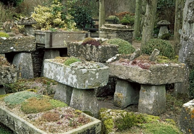 excellent back yard rock garden | rock gardening, with joseph tychonievich (plus our may 6 ...