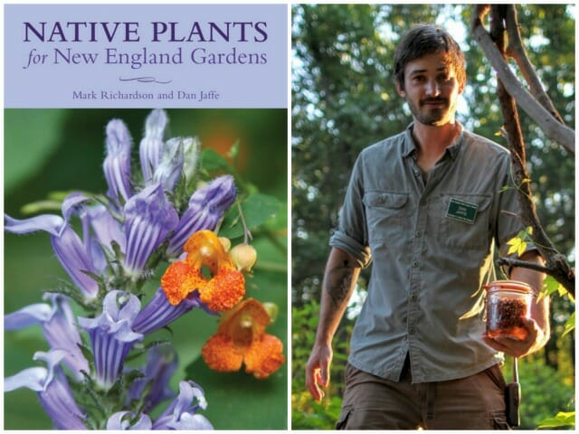 Defining Native And Choosing The Right Native Plants With Dan Jaffe A Way To Garden