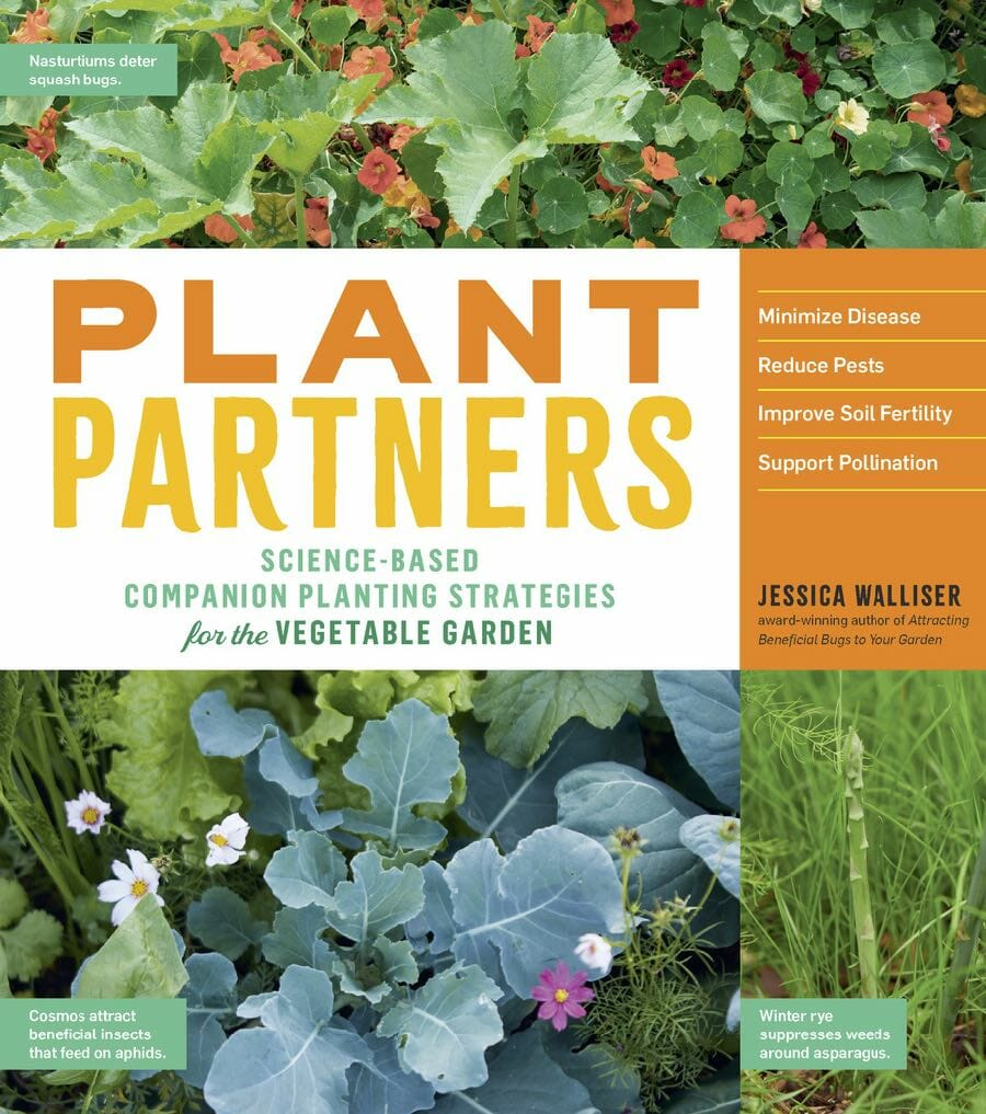 science-based companion planting: 'plant partners,' with jessica walliser